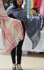 Rebozo Fair 2015-16
